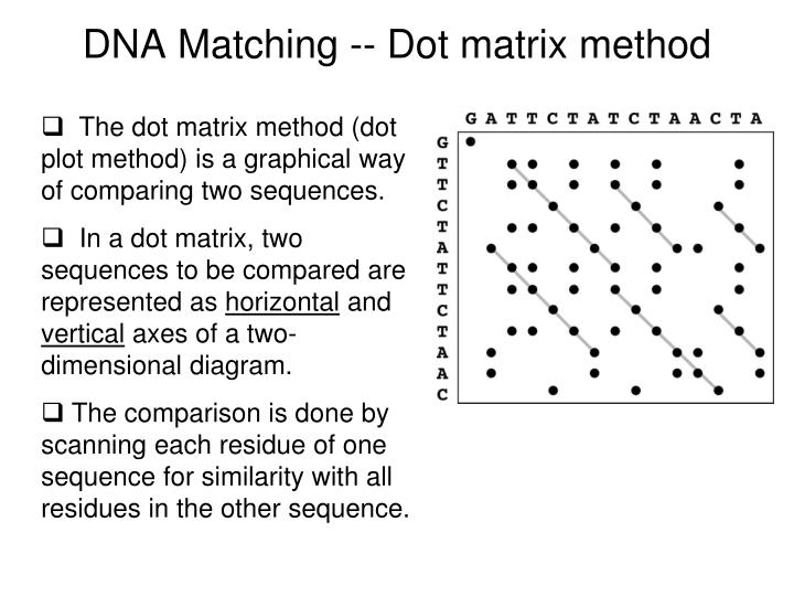 DNA Matching -- Dot matrix method