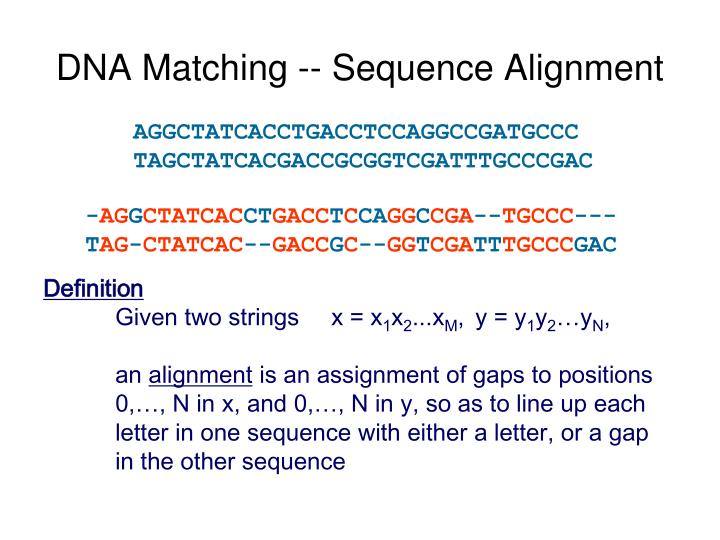 DNA Matching -- Sequence Alignment