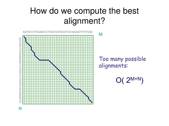 How do we compute the best alignment?