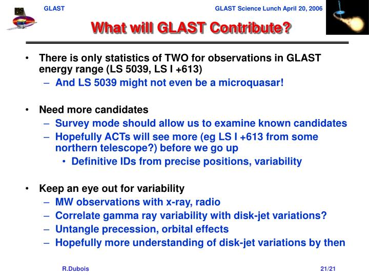 What will GLAST Contribute?