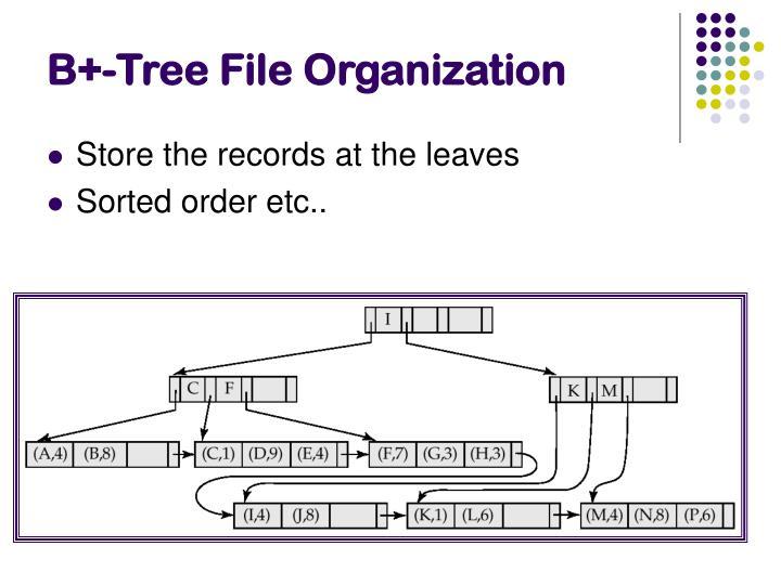 B+-Tree File Organization