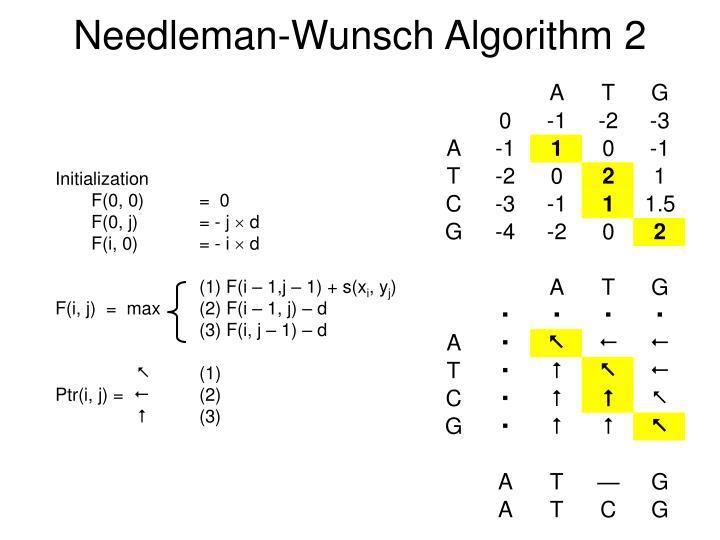 Needleman-Wunsch Algorithm 2