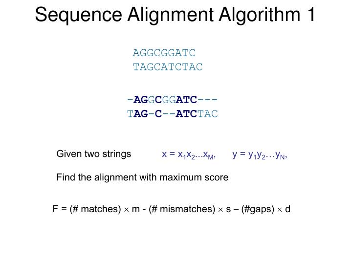 Sequence Alignment Algorithm 1