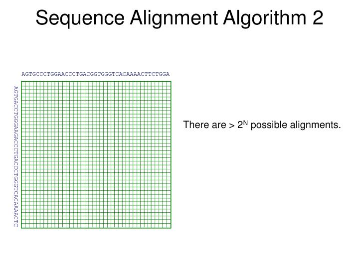 Sequence Alignment Algorithm 2
