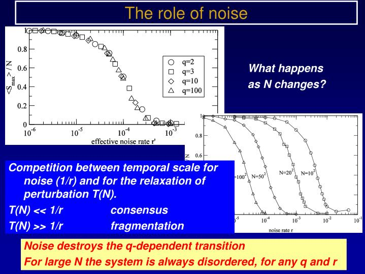 The role of noise