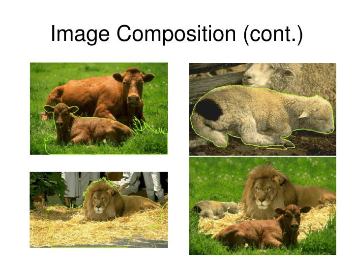 Image Composition (cont.)