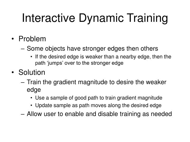 Interactive Dynamic Training
