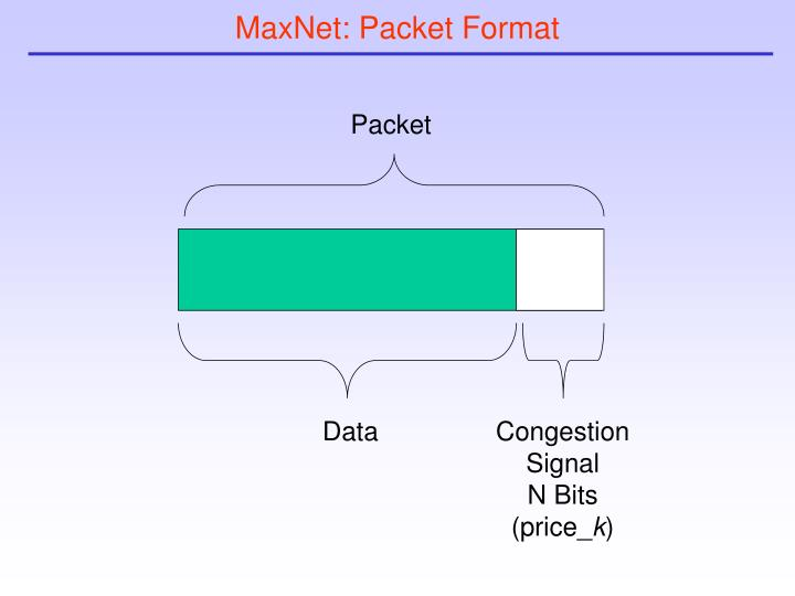 MaxNet: Packet Format