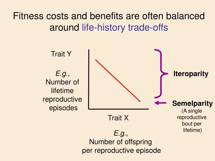 Fitness costs and benefits are often balanced around