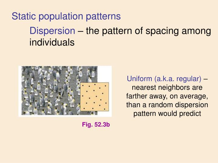 Static population patterns