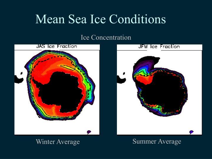 Mean Sea Ice Conditions