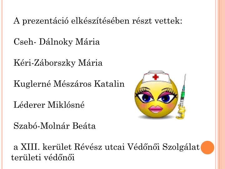 A prezentáció elkészítésében részt vettek: