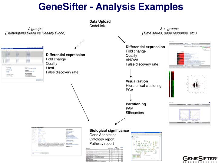 GeneSifter - Analysis Examples