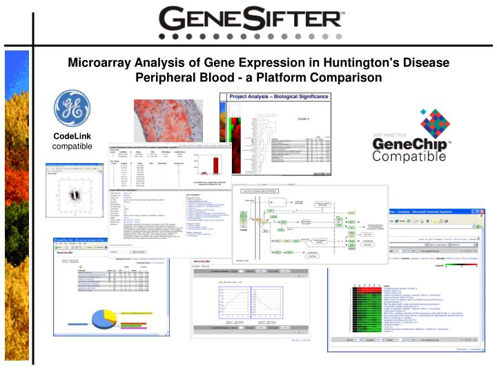 Microarray Analysis of Gene Expression in Huntington's Disease Peripheral Blood - a Platform Compari...