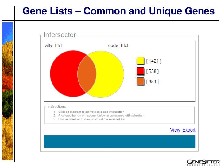 Gene Lists – Common and Unique Genes