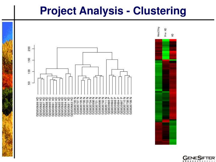 Project Analysis - Clustering