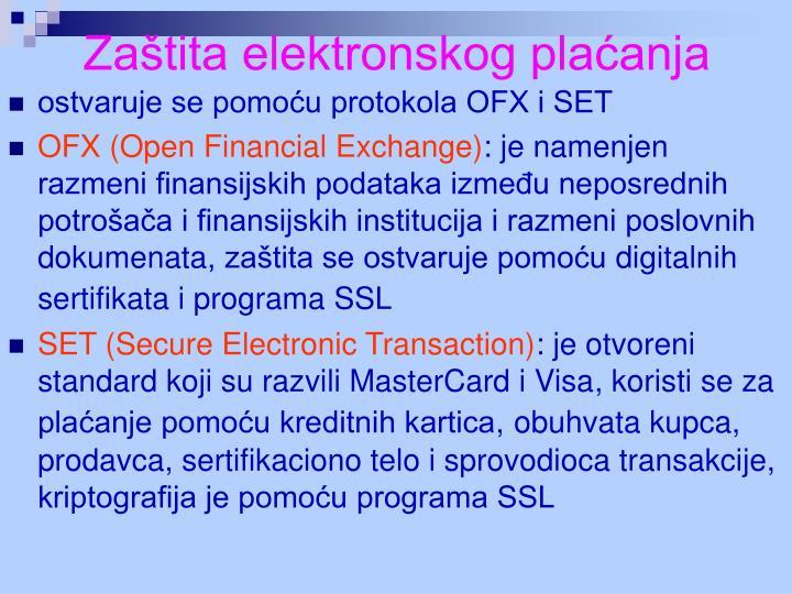 Zaštita elektronskog plaćanja