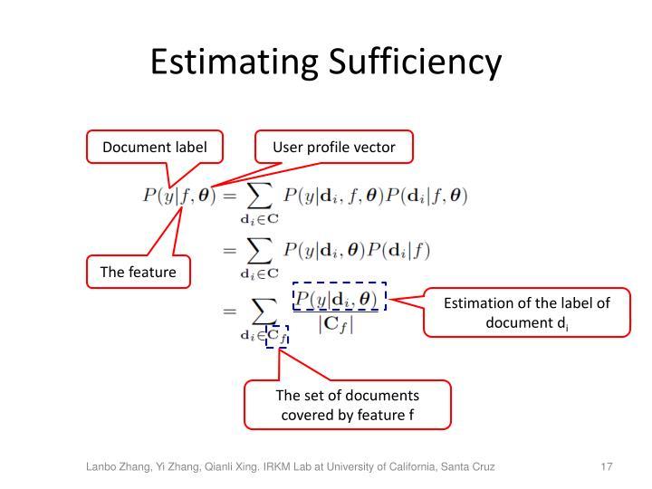 Estimating Sufficiency