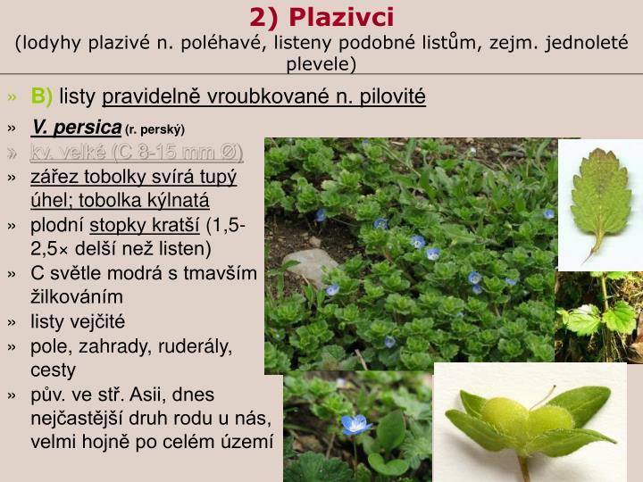 2) Plazivci