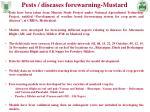 pests diseases forewarning mustard