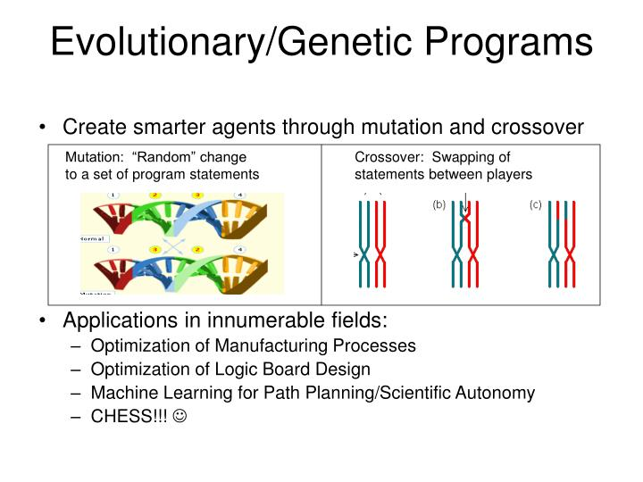 Evolutionary/Genetic Programs