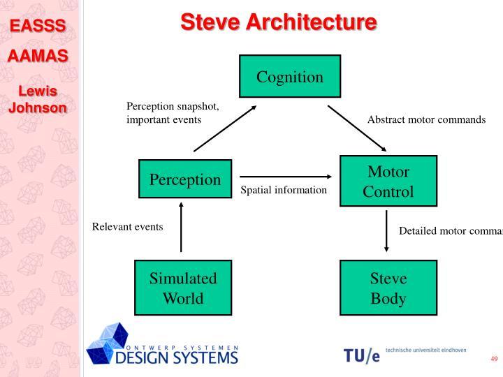 Steve Architecture