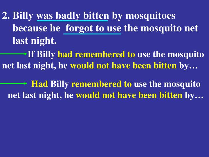 2. Billy was badly bitten by mosquitoes