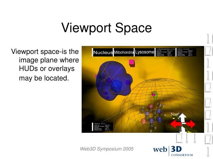Viewport Space
