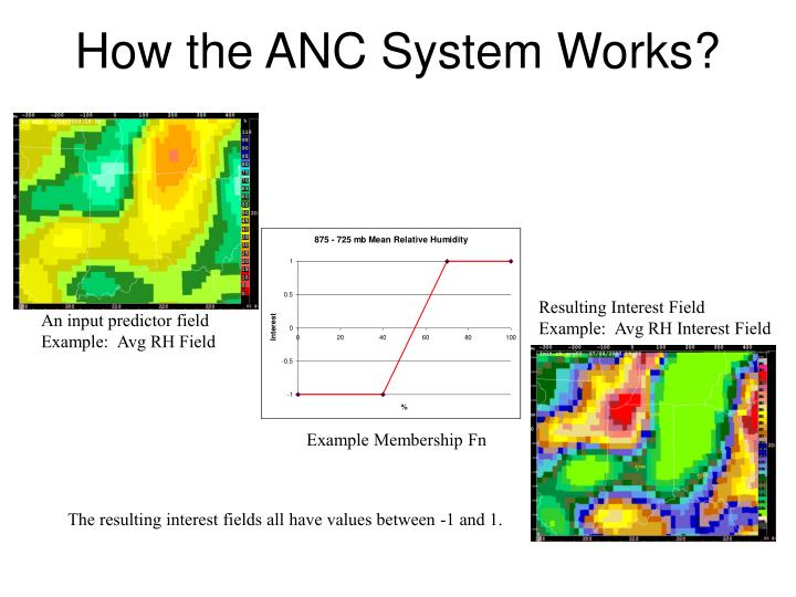 How the ANC System Works?