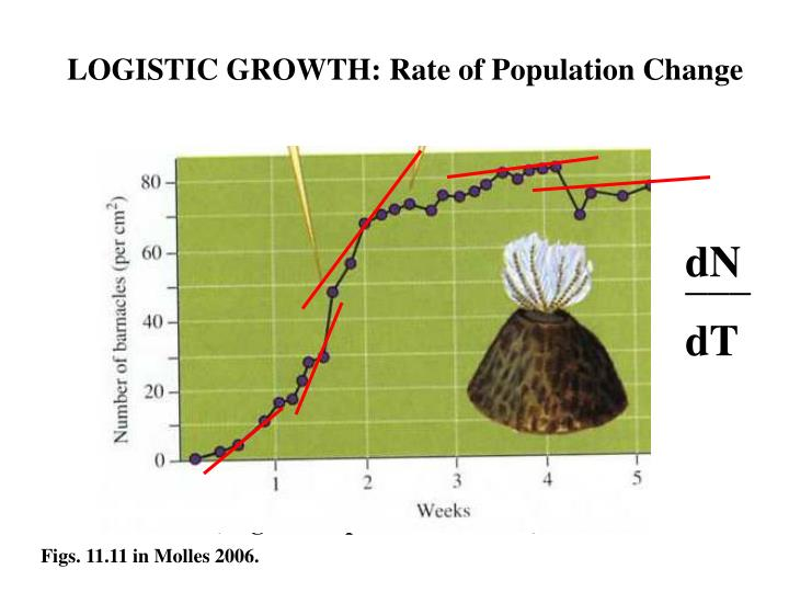 LOGISTIC GROWTH: Rate of Population Change