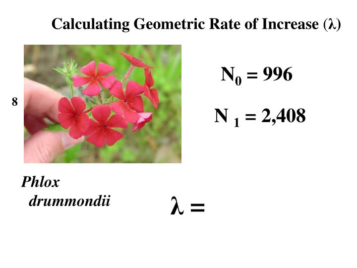 Calculating Geometric Rate of Increase
