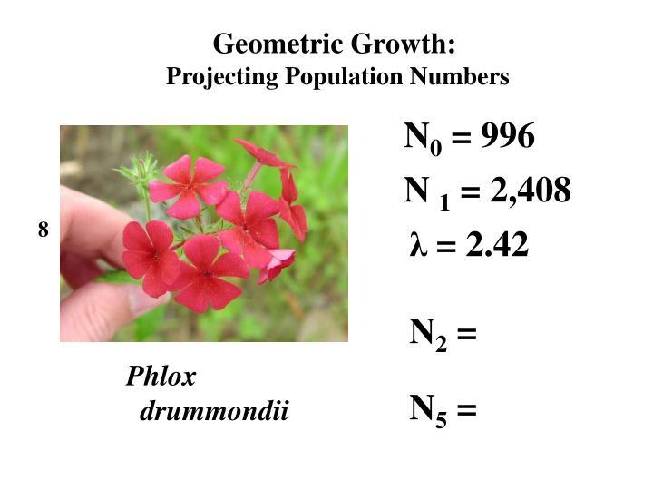 Geometric Growth: