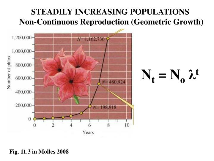 STEADILY INCREASING POPULATIONS