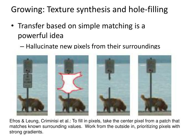Growing: Texture synthesis and hole-filling