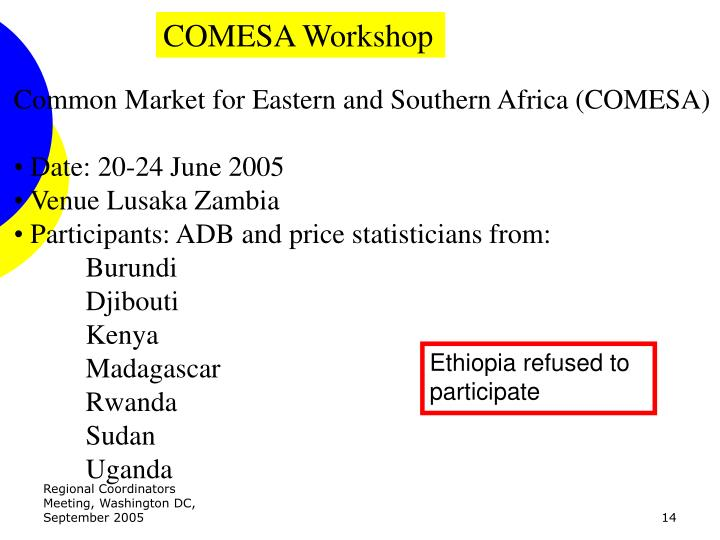 COMESA Workshop