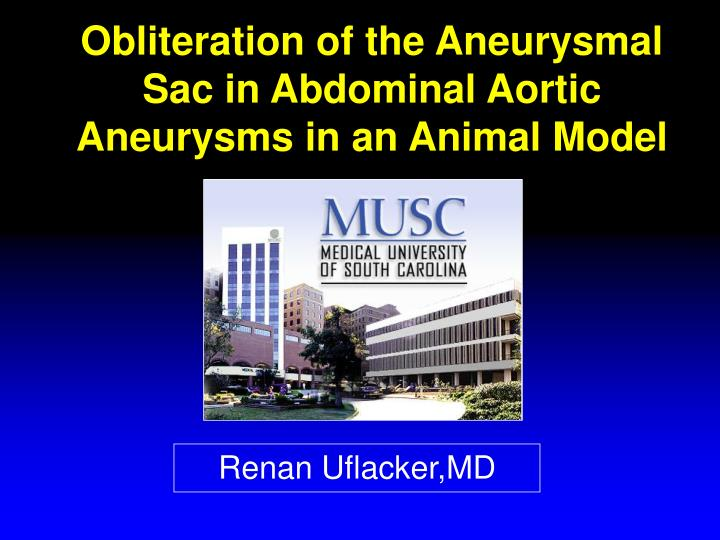 Obliteration of the Aneurysmal Sac in Abdominal Aortic Aneurysms in an Animal Model
