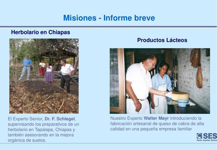 Misiones - Informe breve