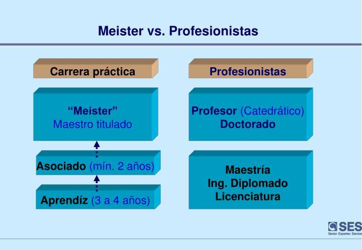 Meister vs. Profesionistas