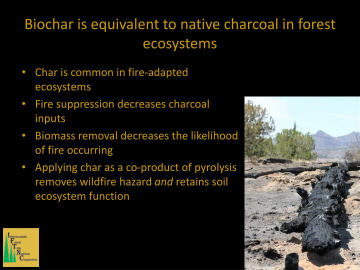 Biochar is equivalent to native charcoal in forest ecosystems