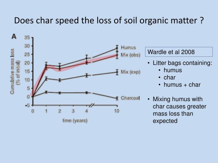 Does char speed the loss of soil organic matter ?