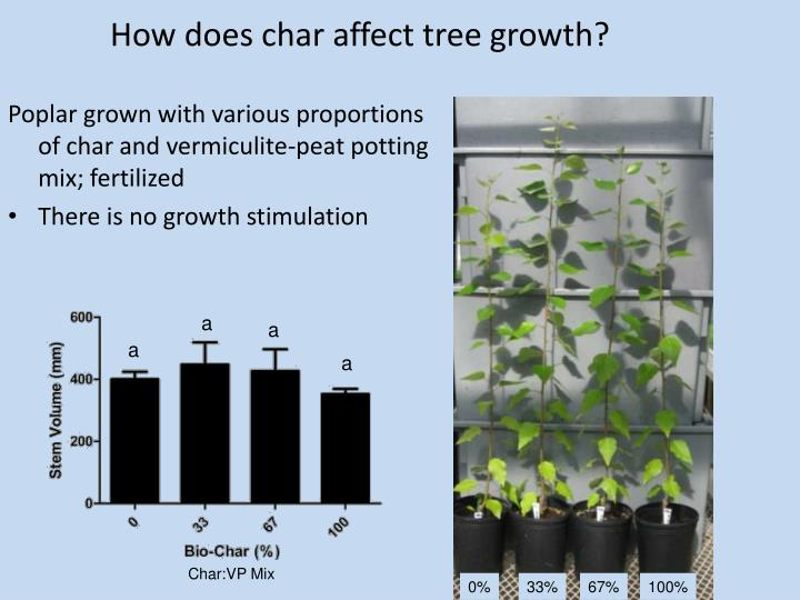 How does char affect tree growth?