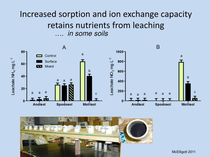 Increased sorption and ion exchange capacity retains nutrients from leaching