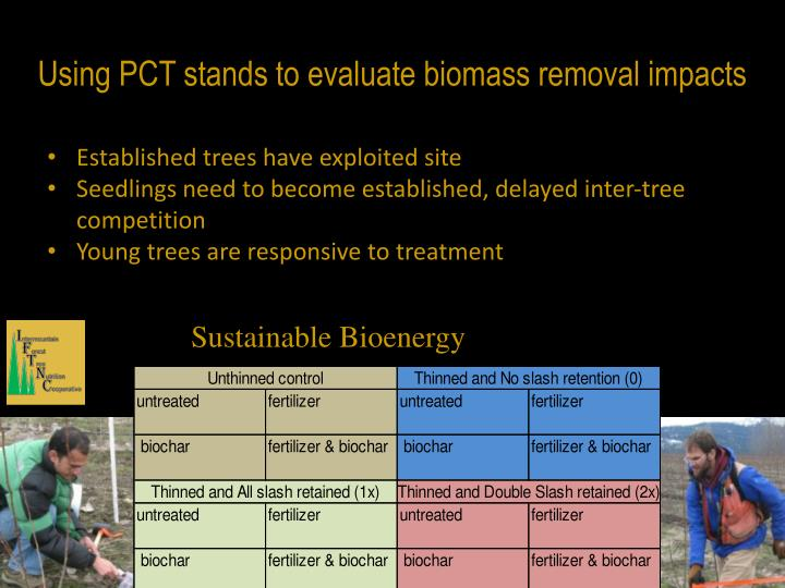 Using PCT stands to evaluate biomass removal impacts