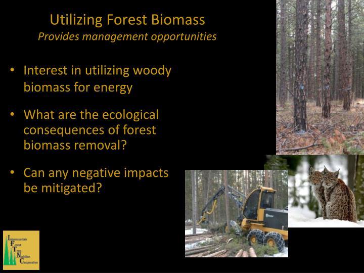 Utilizing Forest Biomass