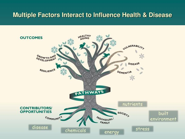 Multiple Factors Interact to Influence Health & Disease