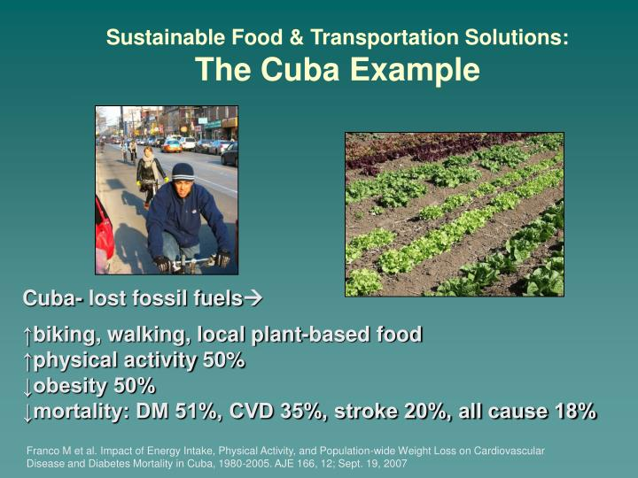 Sustainable Food & Transportation Solutions: