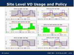 site level vo usage and policy