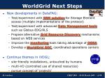 worldgrid next steps