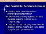 one possibility semantic learning