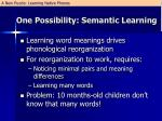 one possibility semantic learning1